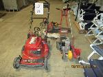 Lot: 21 - Mower, Edger, Blower & Weedeaters