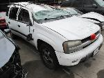 Lot: 1900286 - 2005 CHEVROLET TRAILBLAZER SUV - NON-REPAIRABLE