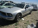 Lot: 31-206428 - 2005 FORD MUSTANG