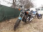 Lot: 14.FW - 1984 HONDA SHADOW MOTORCYCLE