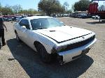 Lot: B41 - 2010 DODGE CHALLENGER - KEY / STARTED