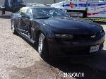 Lot: 1 - 2014 Chevy Camaro - Key / Runs & Drives