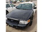 Lot: 19029 - 2009 FORD CROWN VICTORIA