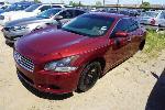 Lot: 30-151329 - 2010 Nissan Maxima - KEY