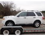 Lot: 39.TYLER - 2009 Ford Escape Hybrid SUV - Key<br>VIN #1FMCU49369KB39469