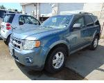 Lot: B9040660 - 2010 FORD ESCAPE XLT SUV