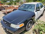 Lot: 19101 - 2010 FORD CROWN VICTORIA