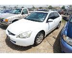 Lot: 09-64443 - 2003 Honda Accord - Key / Runs & Drives