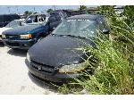 Lot: 30-156819 - 1999 Honda Accord