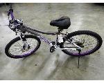 Lot: 02-22622 - Genesis Whirl Wind Bicycle