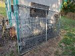 Lot: 290 - (2) Chain Link Fence Gates