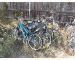 Lot: I18-NWS - (Approx 10) Bikes