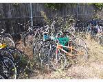 Lot: I19-NWS - (Approx 12) Bikes