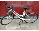 Lot: 02-22931 - Roadmaster Granite Peak Bike