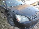 Lot: B902459 - 2005 NISSAN ALTIMA - KEY