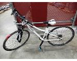 Lot: 02-23407 - Trek Neko Bike