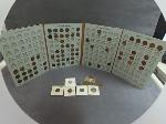 Lot: 8201 - DIME, NICKEL, PENNIES & FOREIGN COINS