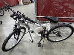 Lot: 02-23477 - Next Plush Bike