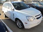 Lot: 19-2838  - 2014 CHEVROLET CAPTIVA SPORT SUV