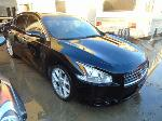Lot: B9110783 - 2009 NISSAN MAXIMA S - KEY / STARTED<BR><span style=color:red>Updated 02/06/20</span>