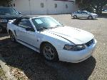 Lot: B 27 - 2004 FORD MUSTANG CONVERTIBLE - KEY / STARTED