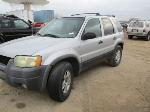 Lot: G 02-D32059 - 2002 FORD ESCAPE XLT SUV