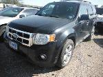 Lot: 19-702609C - 2010 FORD ESCAPE SUV
