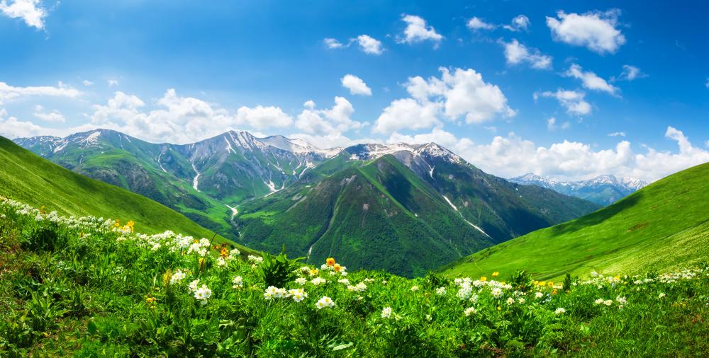 A beautiful alpine landscape