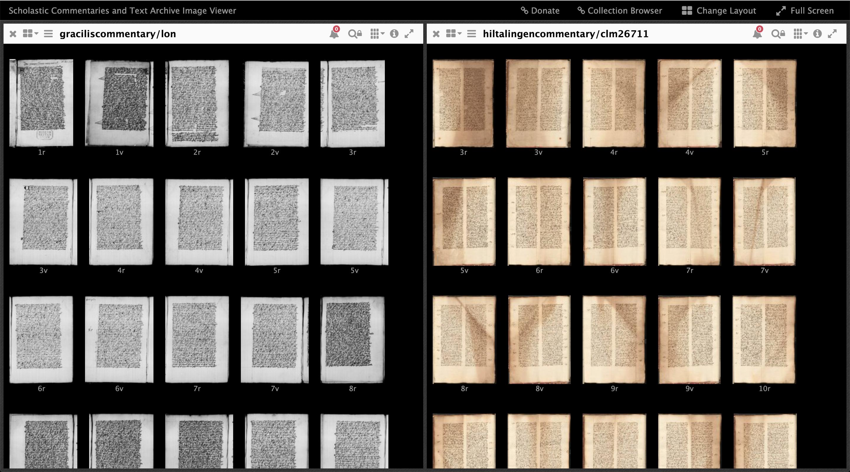 mirador with manuscripts: gracilis and Basel