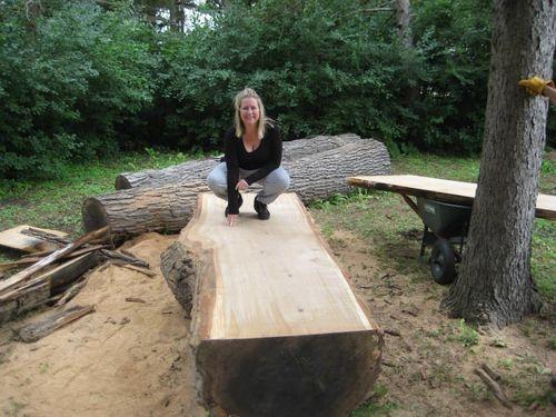 All Replies On Alternative To A Wood Mizer Lumberjocks
