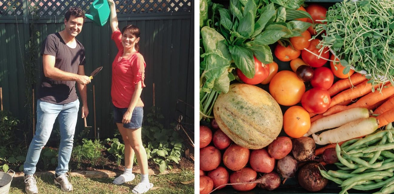 'Swap Your Crop' is Growing a Trade-Based Network for Urban Farmers