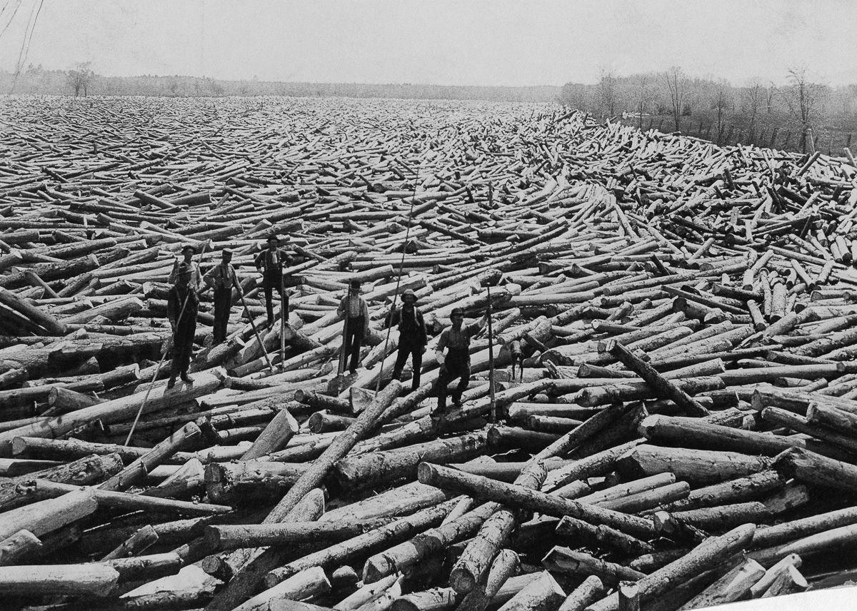 Loggers in rural New York, August 1907. Image: US Forest Service Mitigating Paper Emissions Through Sustainable Forestry