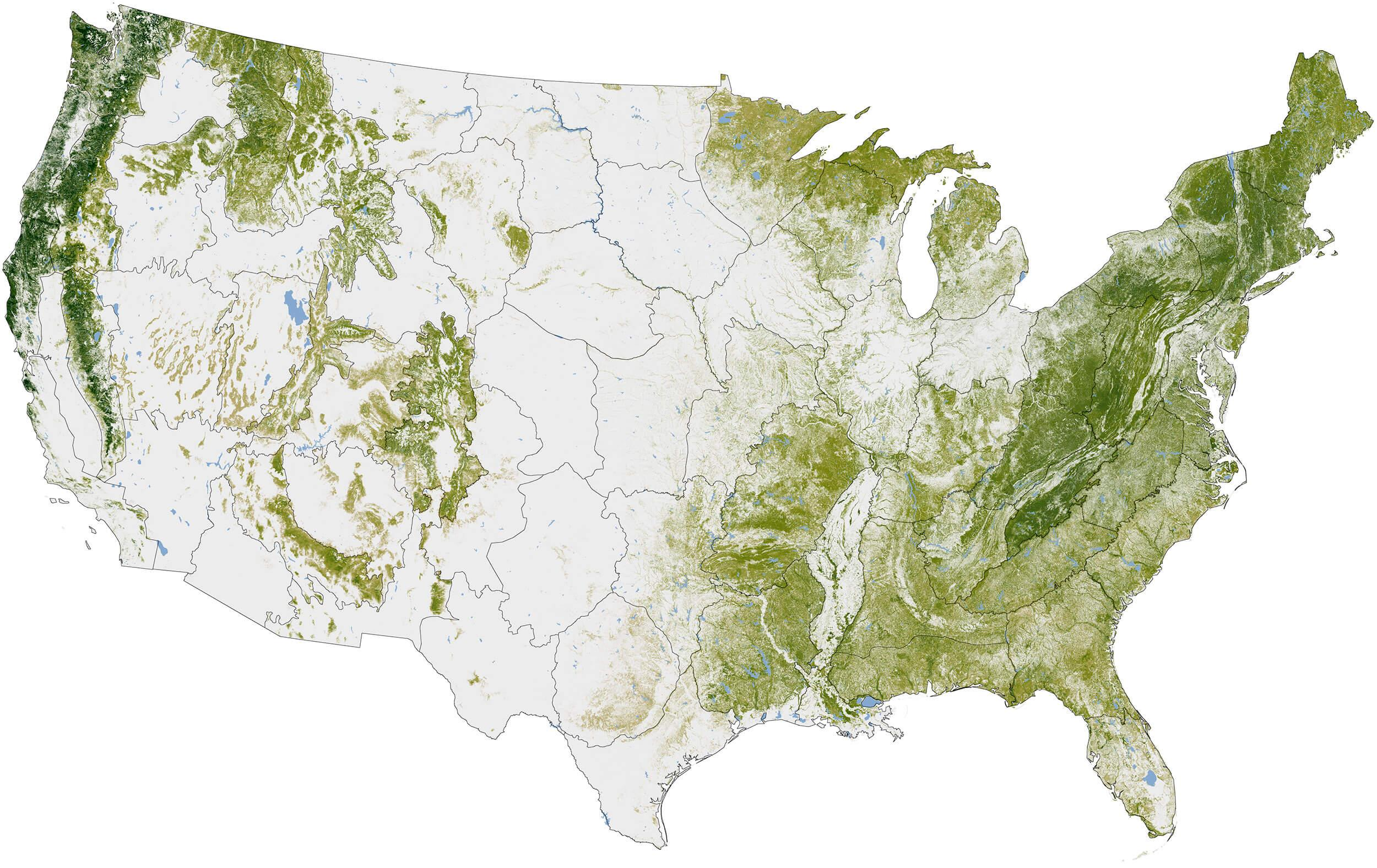 Forests cover about 30% of the planet's land area, and as much as 45% of the carbon stored on land is tied up in forests. The National Biomass and Carbon Dataset is the largest high-resolution map of forest biomass yet assembled. Map by Robert Simmon based on 2011 data from Woods Hole Research Center. Source: NASA Mitigating Paper Emissions Through Sustainable Forestry