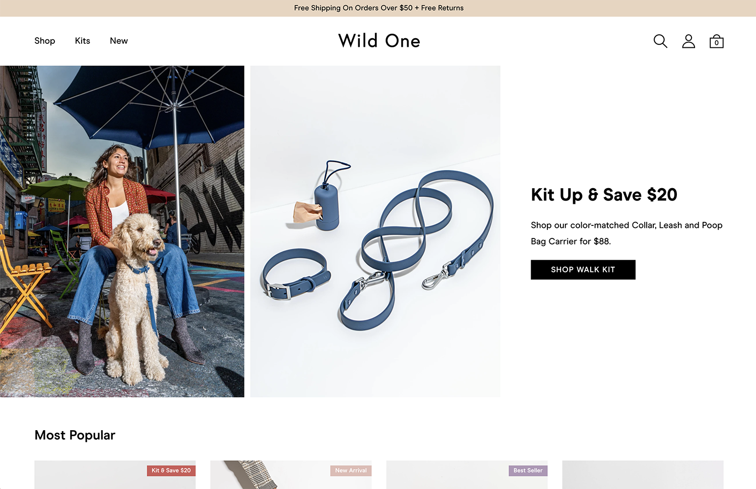 Wild One home page