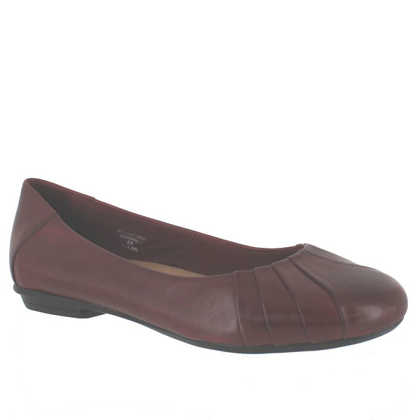 Earth Bellwether Flats
