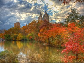 New York fall foliage_Central Park_Anthony Quintano-autumn