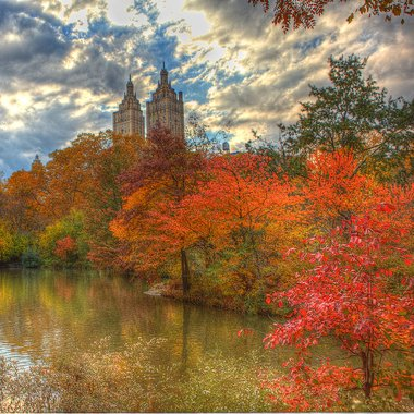 New York_Central Park_Anthony Quintano