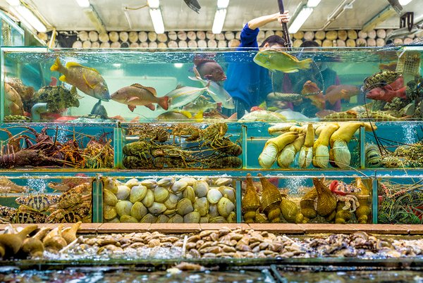 Discover Hong Kong: Sai Kung Seafood