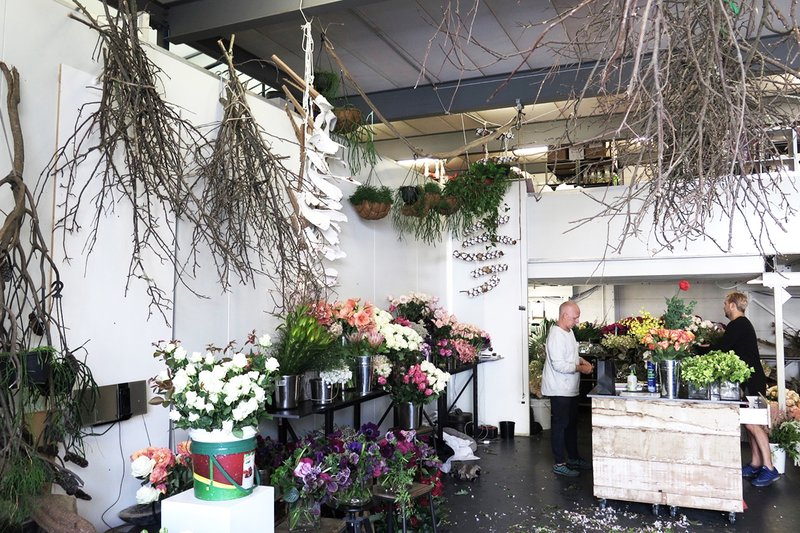 Mr-Cook-Flowers-Sydney.jpg