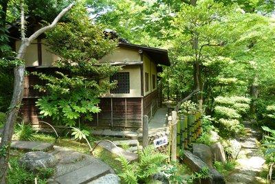Nezu Museum, Tokyo: Sakura Antidote