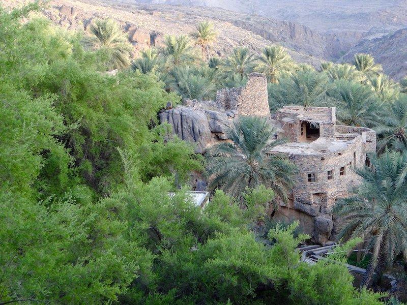 Shelley Dark Travel Oman10.jpg