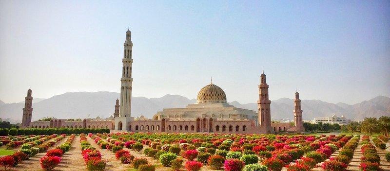 Shelley Dark Travel Oman2.jpg