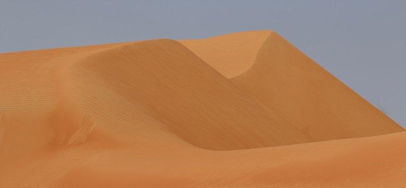 Shelley Dark Travel Oman7.jpg