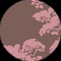 Tokyo Destination circles pattern.png