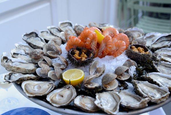 Oyster Season in Paris