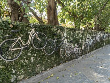 Bike Tours Bangkok