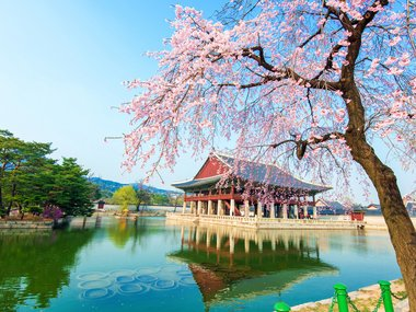 insiders-guide-to-seoul.jpg