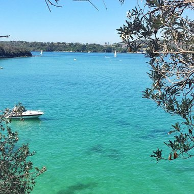 Sydney Manly Scenic Walk