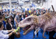 The Chicago Game & Toy Fair