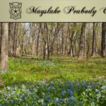 DuPage County Forest Preserve Art at Mayslake